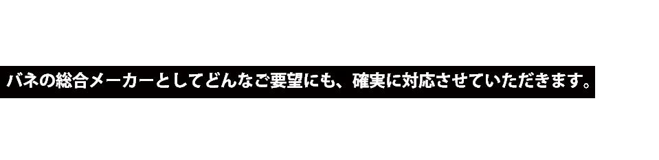 SPRING General manufacturer